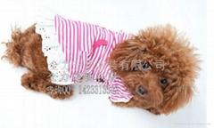 全力宠物衣服条纹花边裙粉