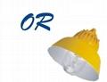 BLC8600平台道路燈