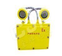 BXW6229 长寿防爆应急工作灯(LED) 1