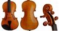 Beginner / Student Violin