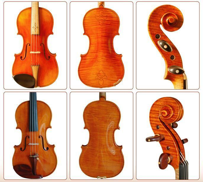 Professional Violin 1