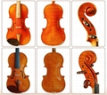 Professional Violin 1
