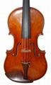 Professional Violin 2