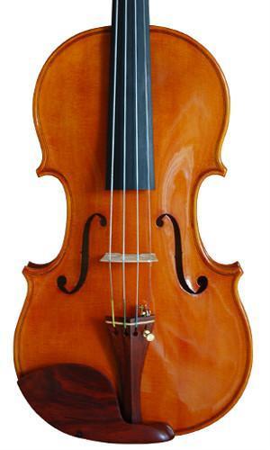Professional Violin 3