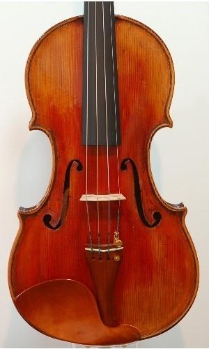 Professional Violin 5