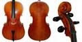 Beginner / Student Cello