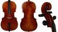 Professional Cello