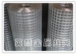供应镀锌电焊网 1