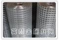 供應鍍鋅電焊網