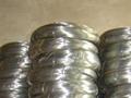 供應鍍鋅絲