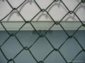 勾花菱形网 1