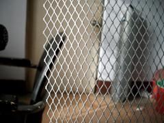 钢板网  金属扩张网