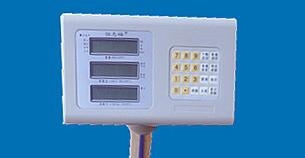 electronic printing  scale  3