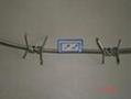 监狱刺绳 2