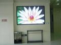室內P7.62全彩色LED顯示