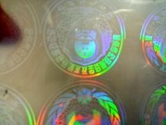 環保型熱封透明防偽鐳射護卡套膜