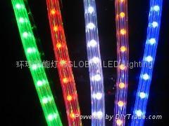 UL LED Rope Light