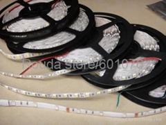 led strips ac220v dc12v 24v 30led/m 60led/m smd3528 smd5050 high quantity