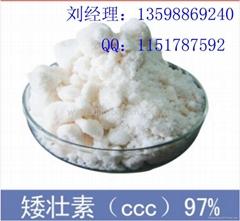 Chlormequat Chloride (CCC)