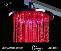 12'' Brass LED overhead shower