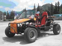 Buggy 800cc 650cc 580cc