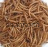 microwaved dried mealworm