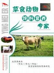 肉牛预混料肉牛营养