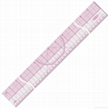 plastic/straight ruler