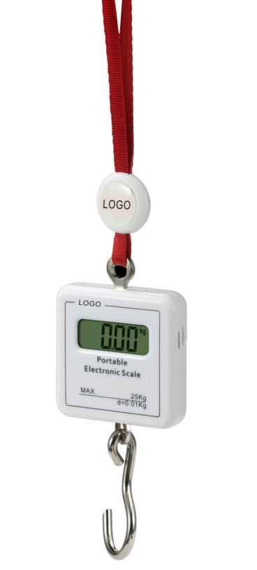 hanging scale OCS 1