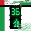LED Traffic Walkman & Seconds Countdown Pedestrian Signal