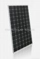 195W 太阳能单晶硅组件