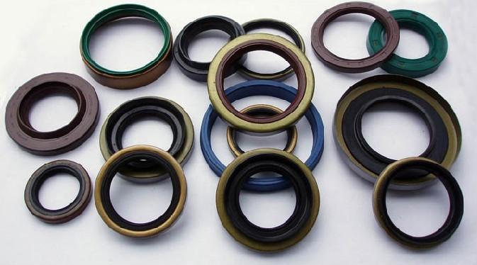 oil seals 1