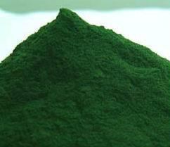 sprulina powder 1