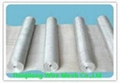 stailess steel wire mesh  1