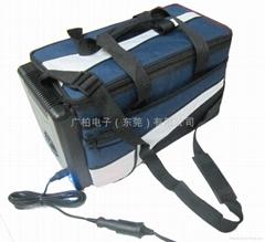 12can cooler bag