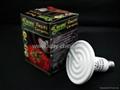 Reptile ceramic CHG-F100 2