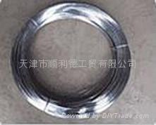 供應天津電鍍鋅絲熱鍍鋅絲清潔球絲扁絲 1