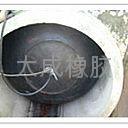 閉水閉氣實驗氣囊 4