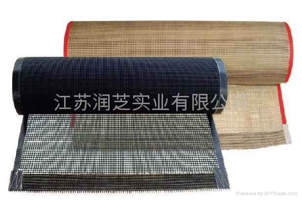 Heat Resistant Teflon Mesh Fabric Conveyor Belt - RZ-6008