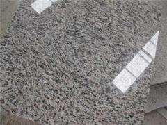 Tiger Skin Red Granite tile