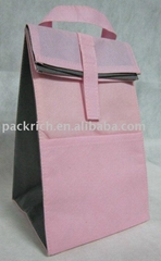 2012 New design non-woven ice bag