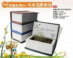 書本花卉組合栽培