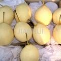 Fresh Ya Pear 2