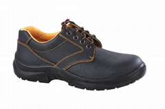 Safety Shoes (TE128)