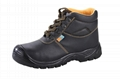 Safety Shoes (TC715)