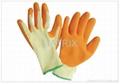 Latex Gloves 1