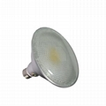 Waterproof COB led downlight PAR38 10w