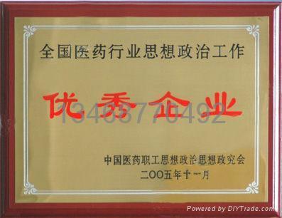 西安銅獎牌 1