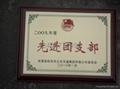 西安銅獎牌 2