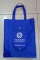 西安无纺布环保购物袋子 2